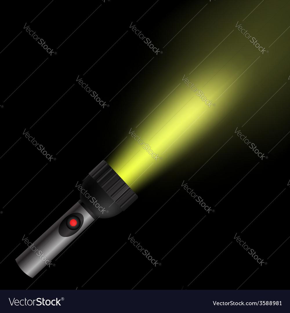 Torch light vector
