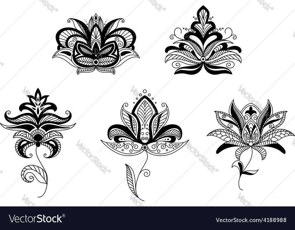 Paisley floral elements and patterns vector