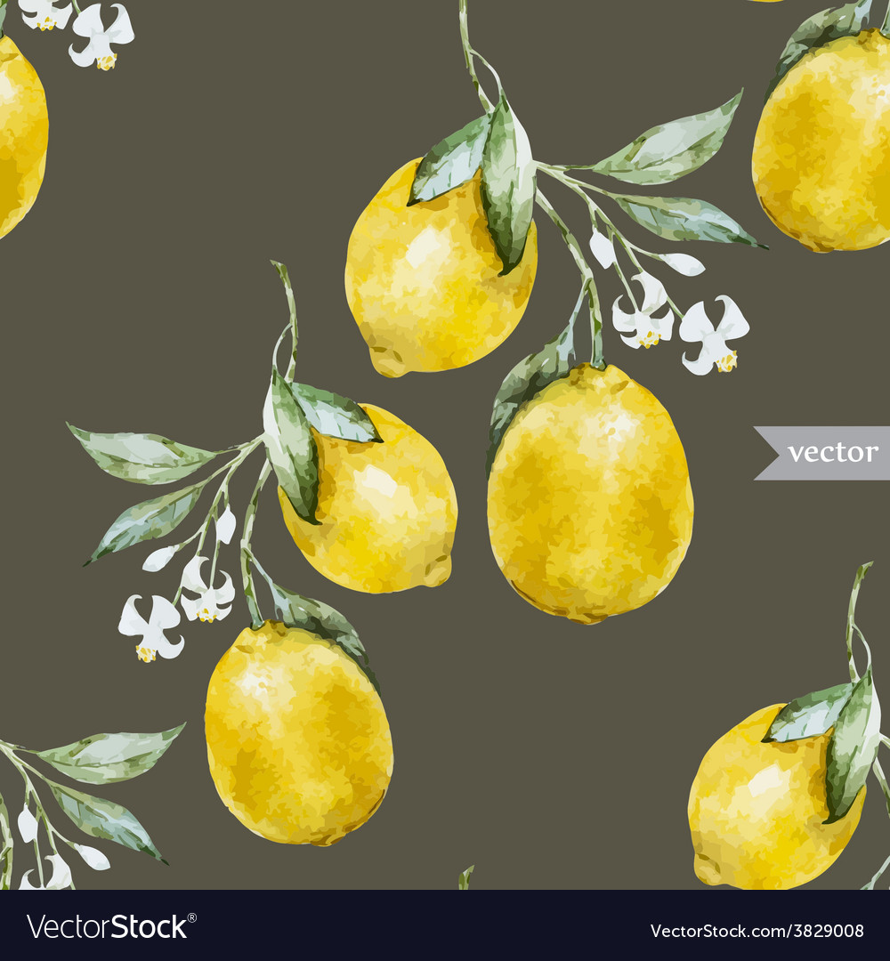Lemon pattern4 vector