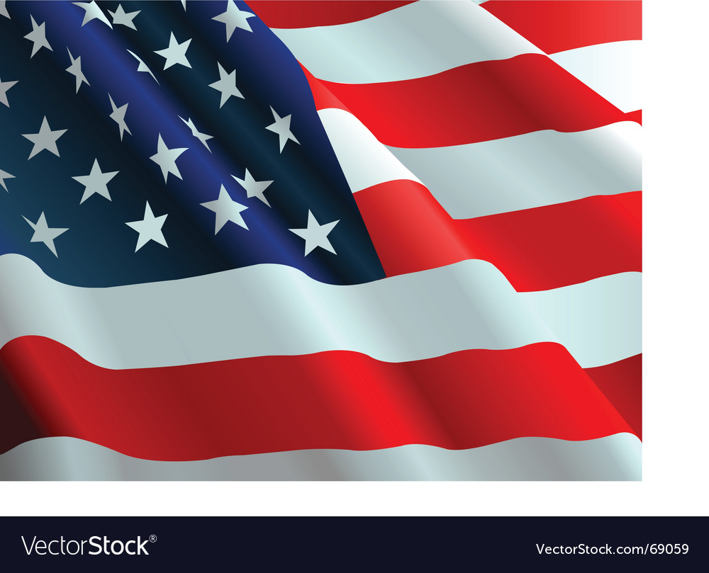The american flag vector