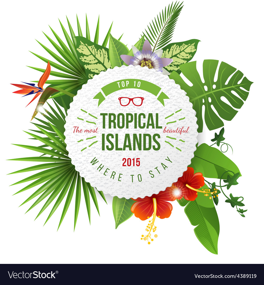 Tropical emblem with type design vector