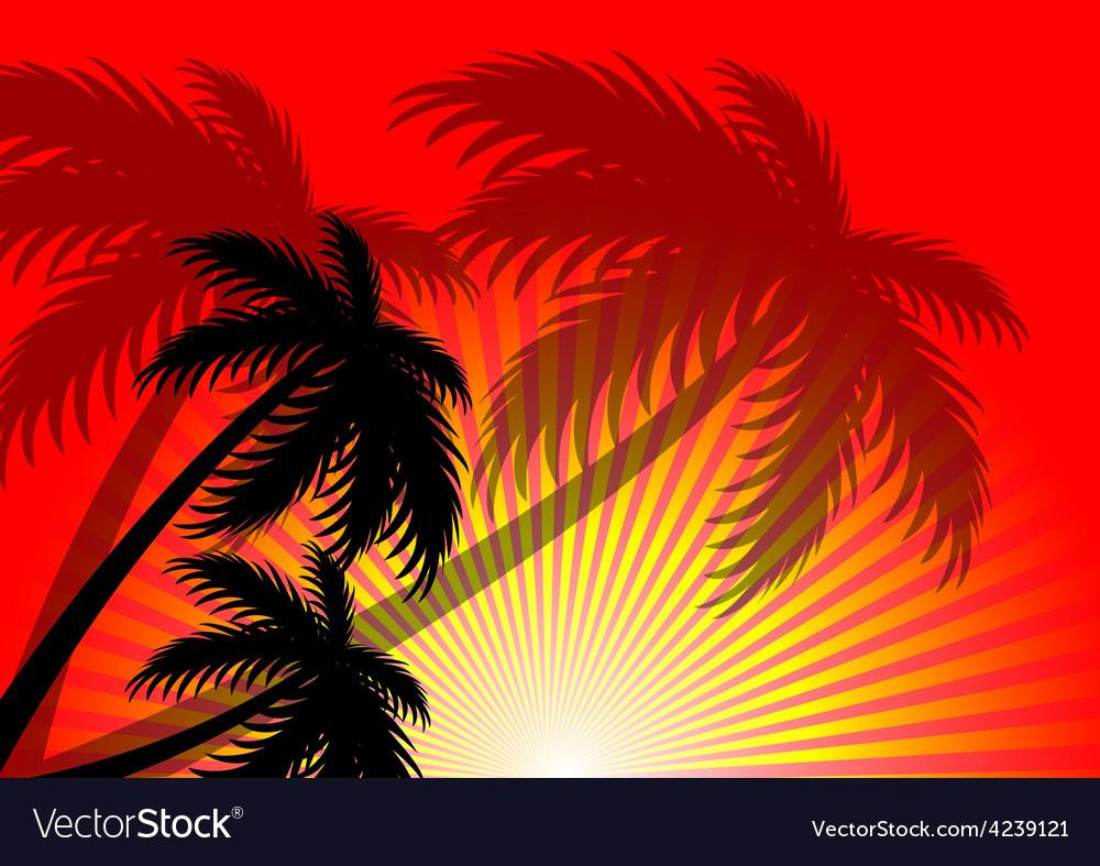 Sunset sunlight summer background vector