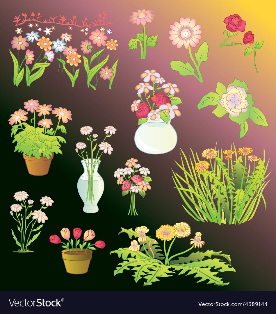 Assortment of flowers vector