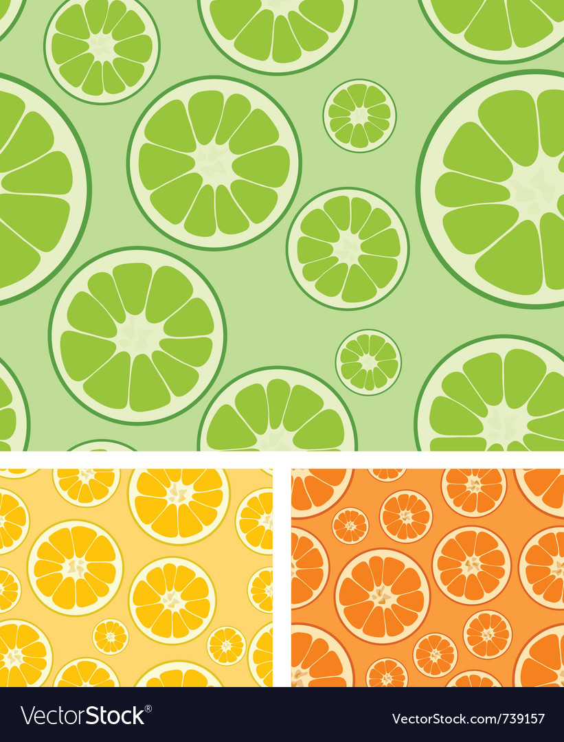 Citrus seamless background vector