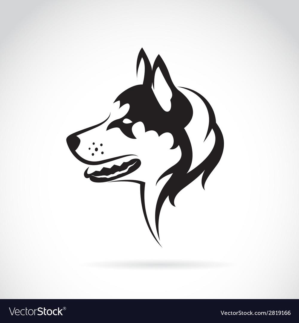 Image of a dog siberian husky vector