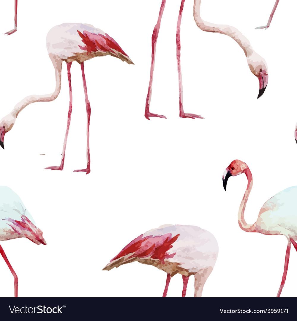 Flamingo pattern vector