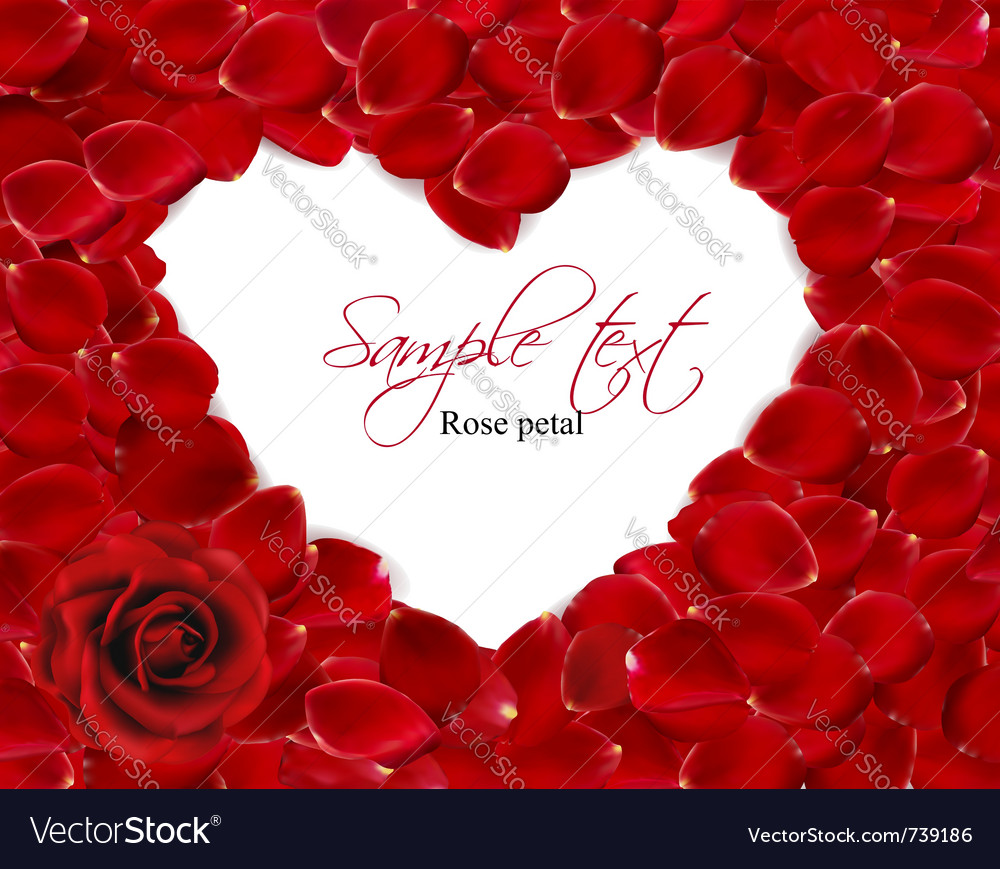 Beautiful heart of red rose petals vector
