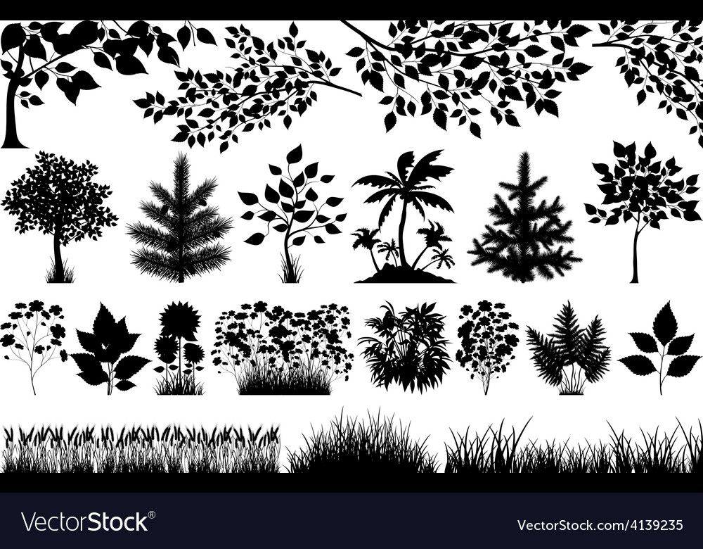 Silhouette of floral elements vector