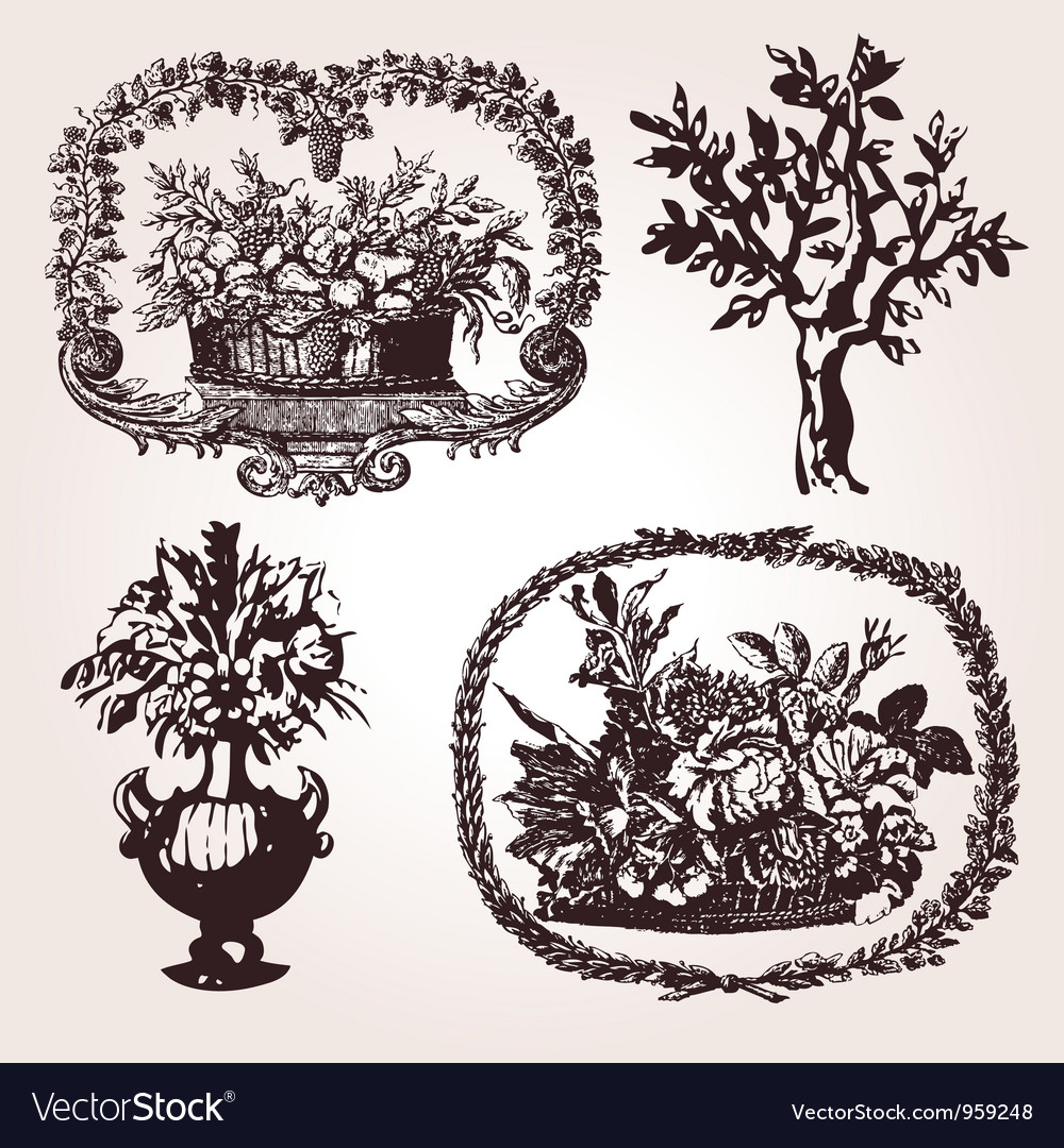 Vintage engraved vector