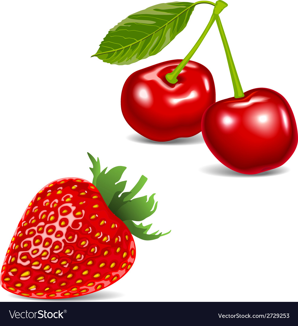 Strawberry food red fruit vector