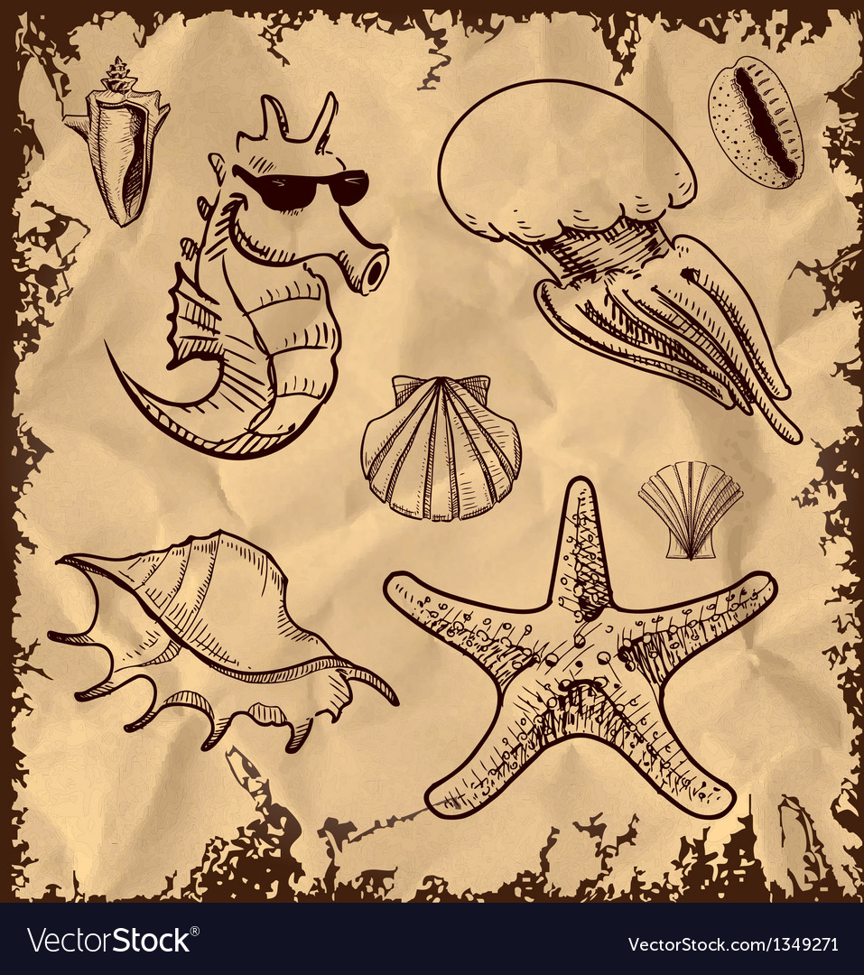 Sea animals collection on vintage background vector