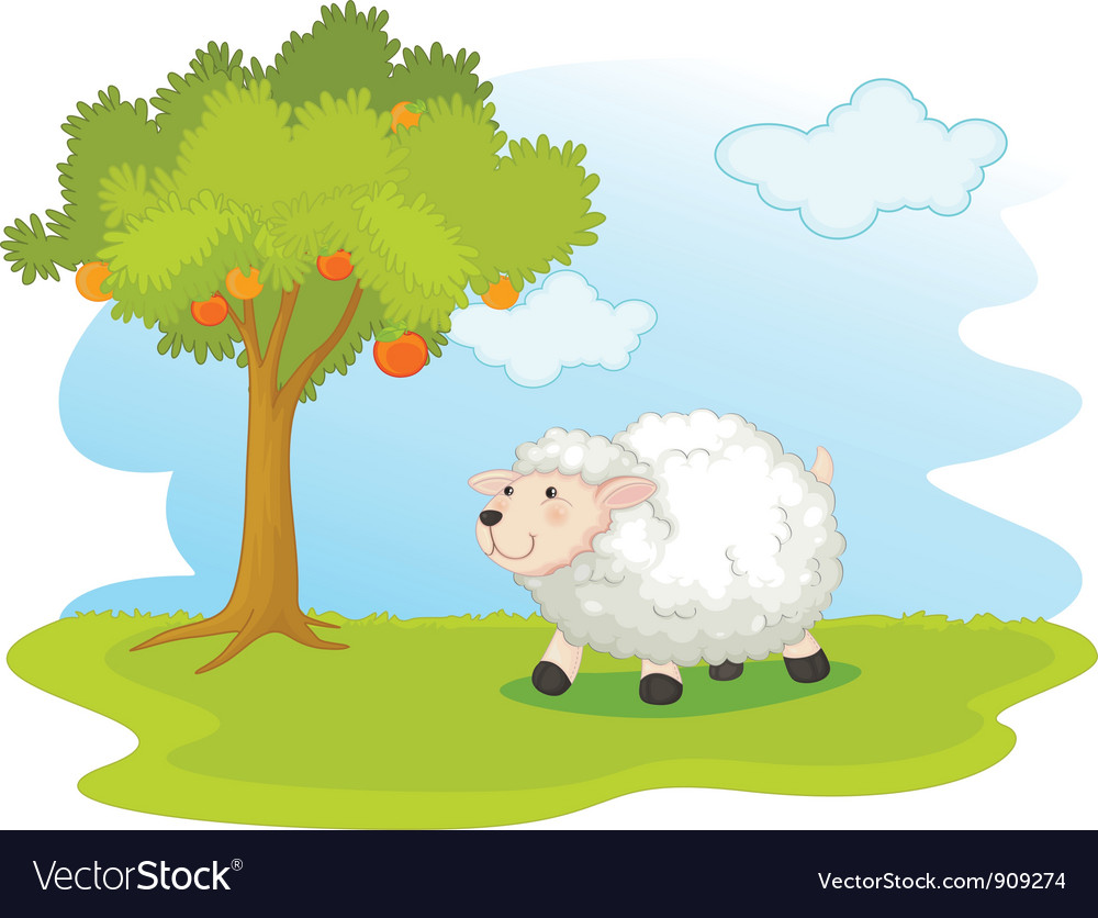 Sheep field vector