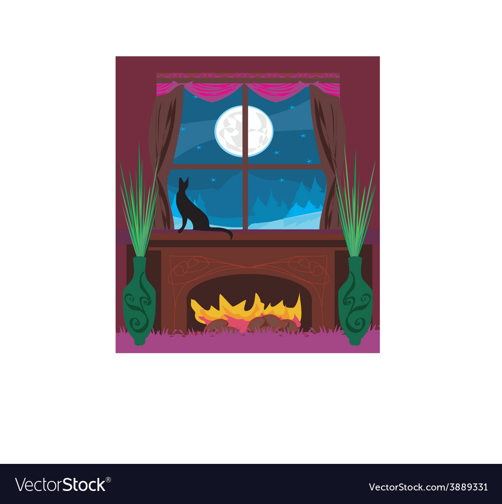 Cat looks out the window vector