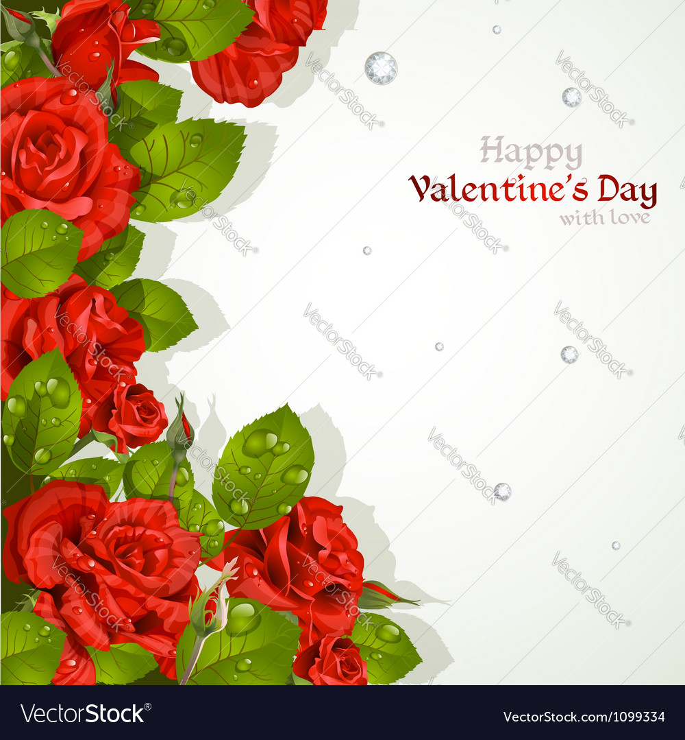 Valentines day card with red roses vector