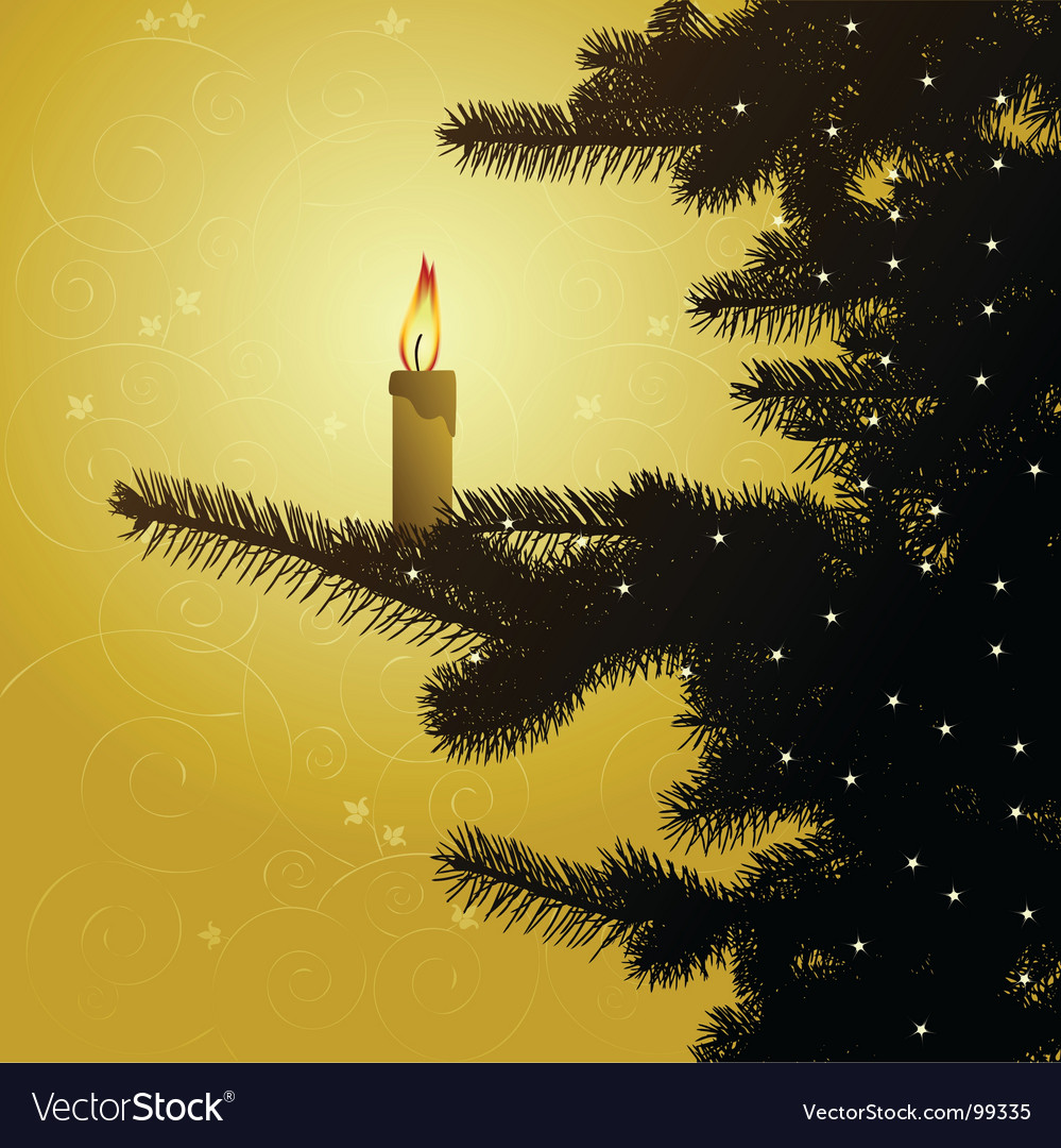 Winter background christmas tree vector
