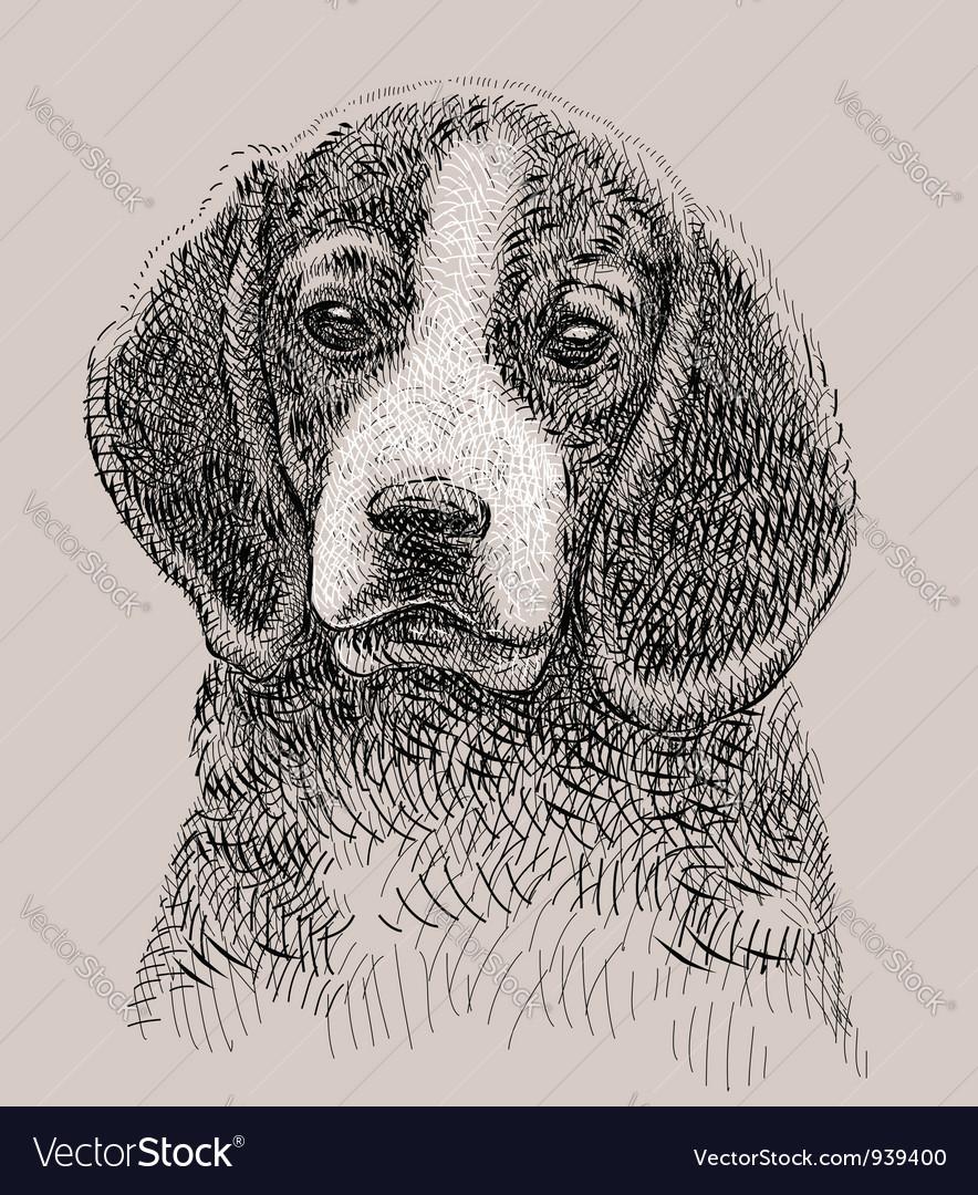 Dog drawing vector