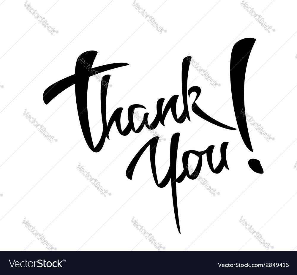 Thank you lettering handmade calligraphy vector
