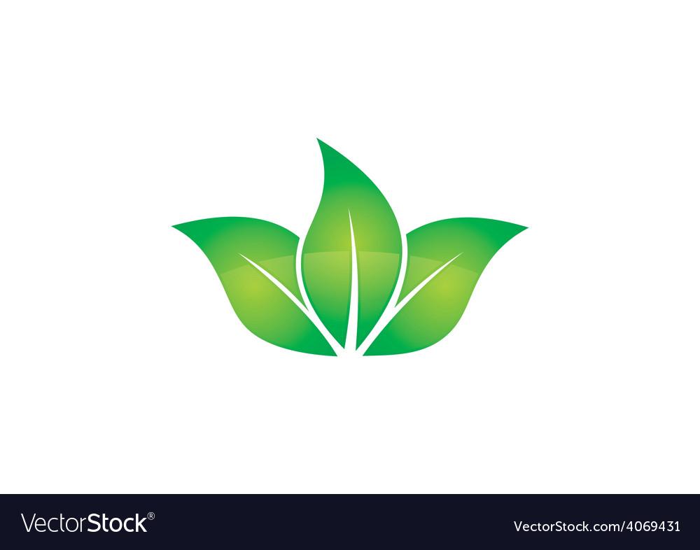 Green leaf three natural logo vector