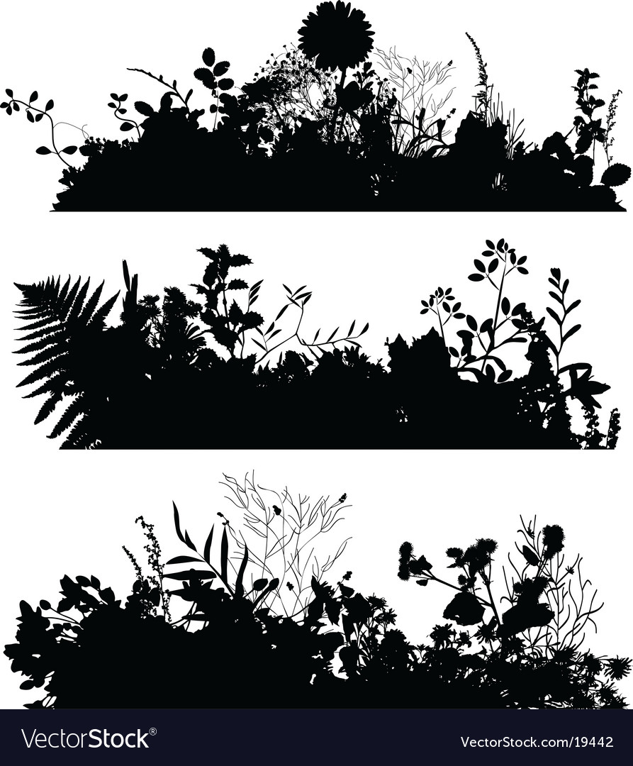 Plant silhouettes vector