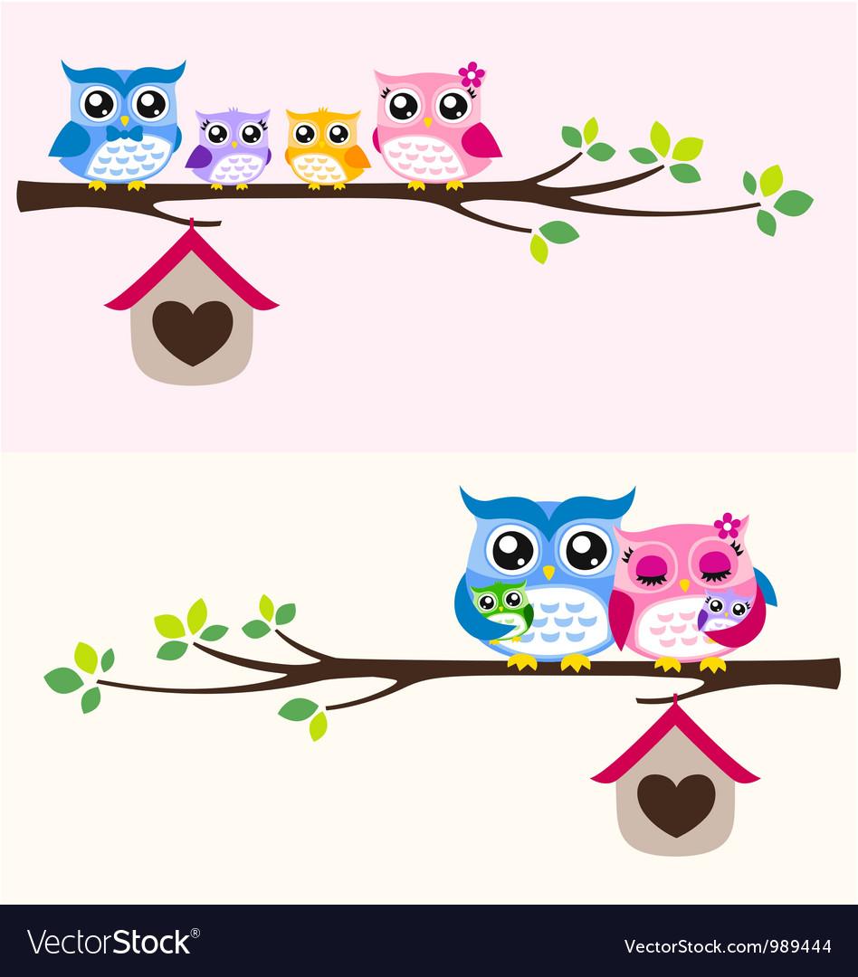 Owl family vector