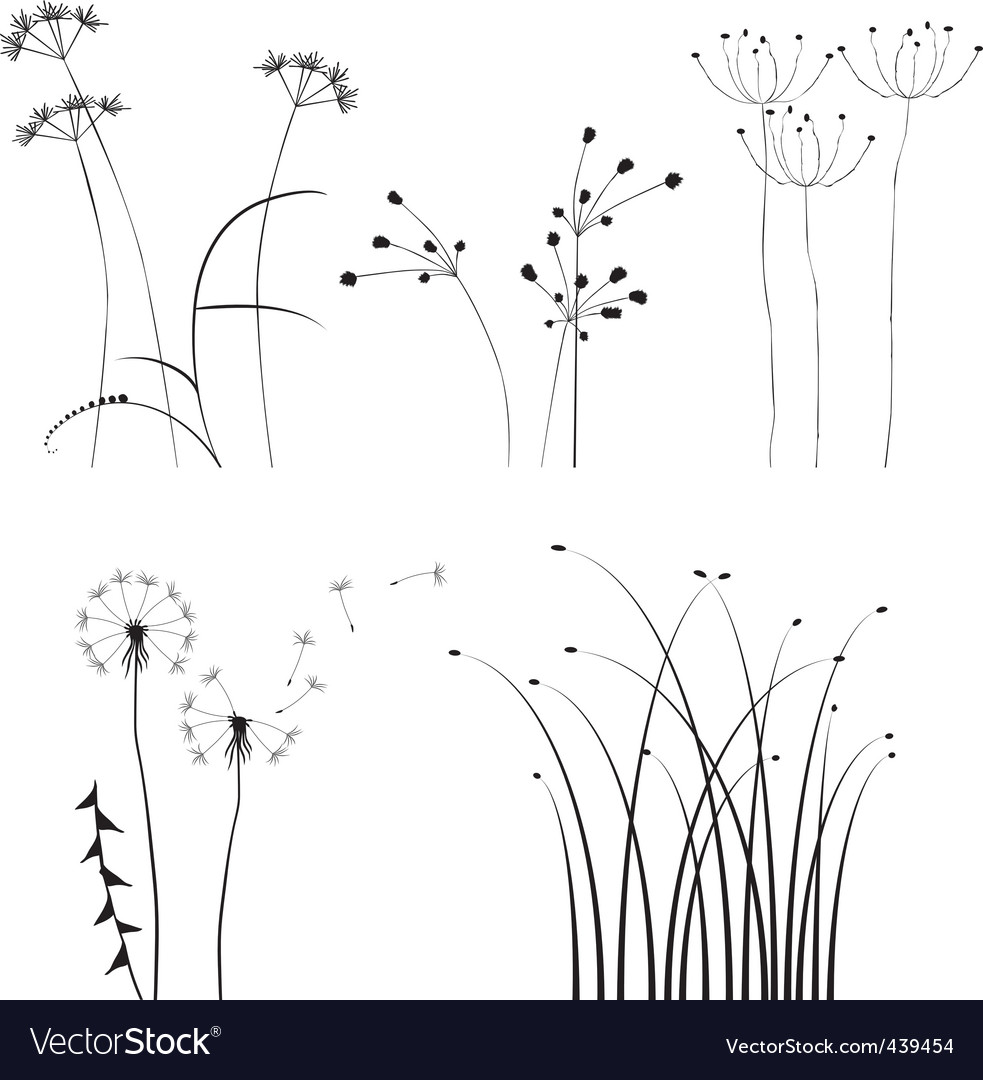 Tion for designers plant vector vector