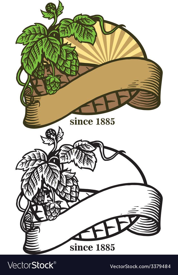 Hand drawing of hops and ribbon vector