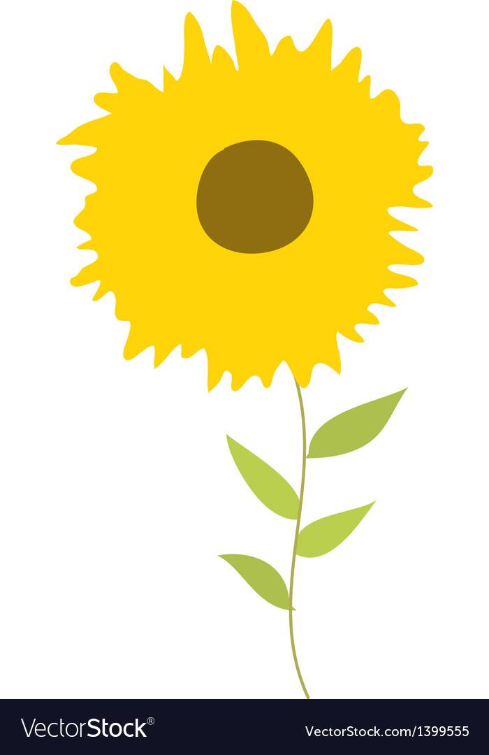 A sunflowers vector