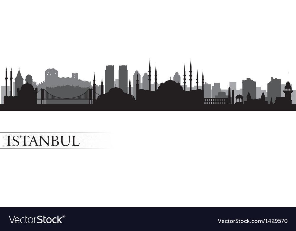 Istanbul city skyline detailed silhouette vector