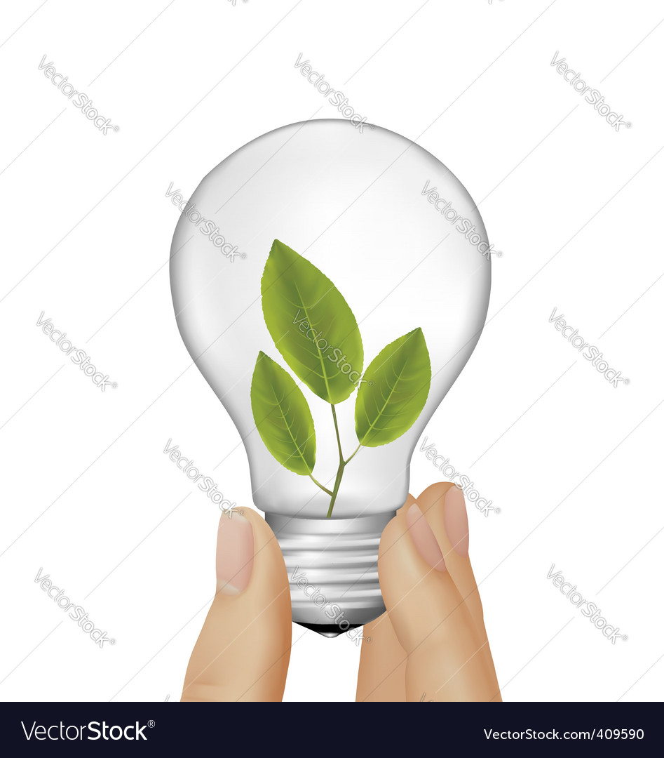 Plant inside light bulb vector