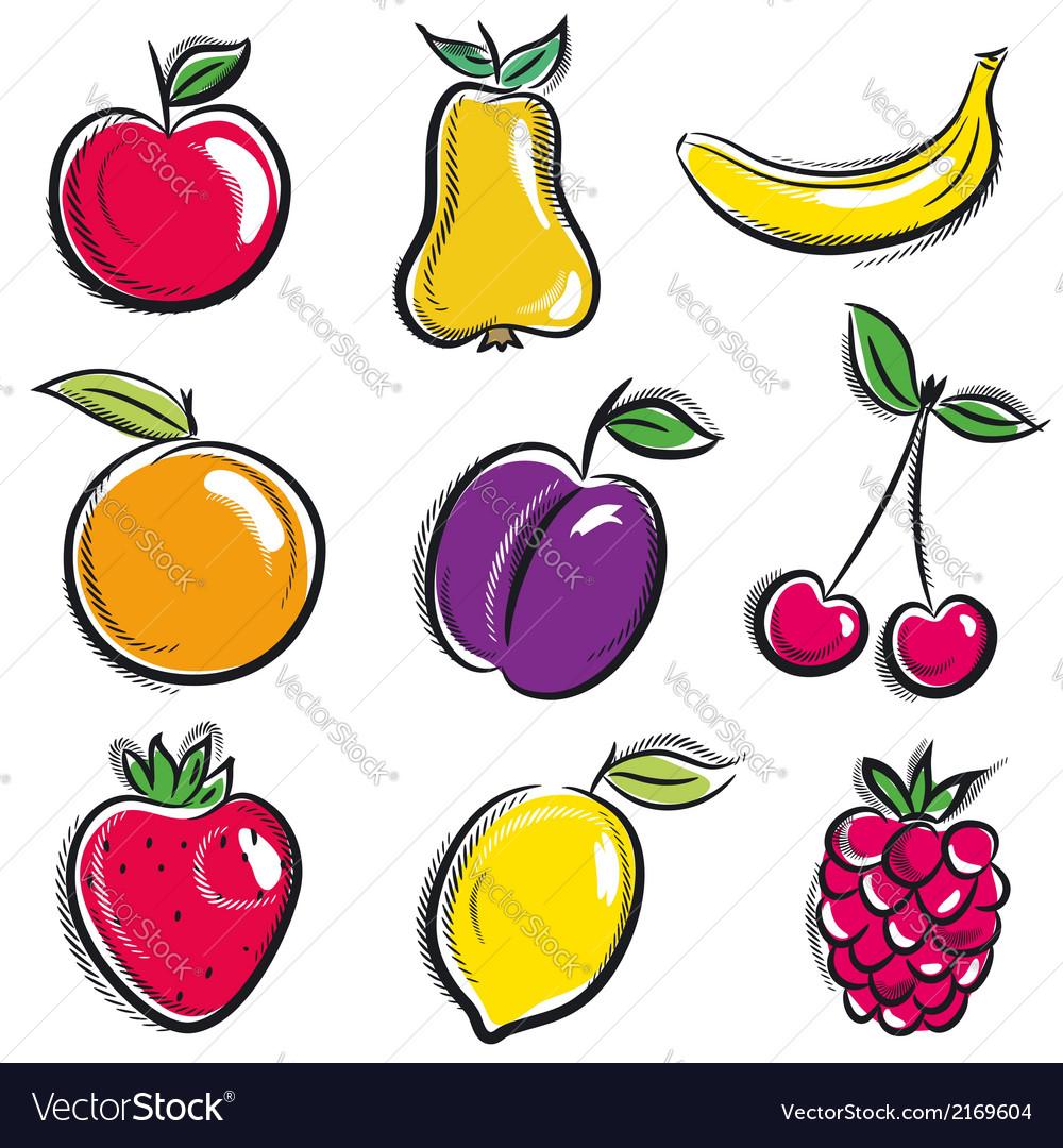 Set of fruits fruit applepear banana orange plum vector
