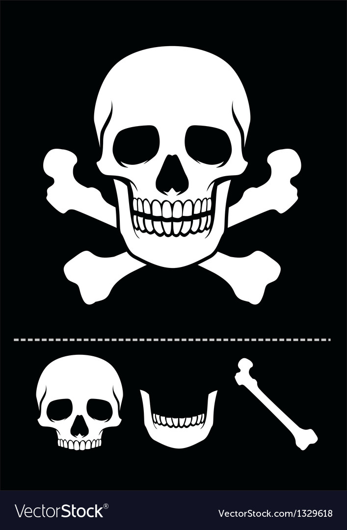 Skull and crossed bones icon vector