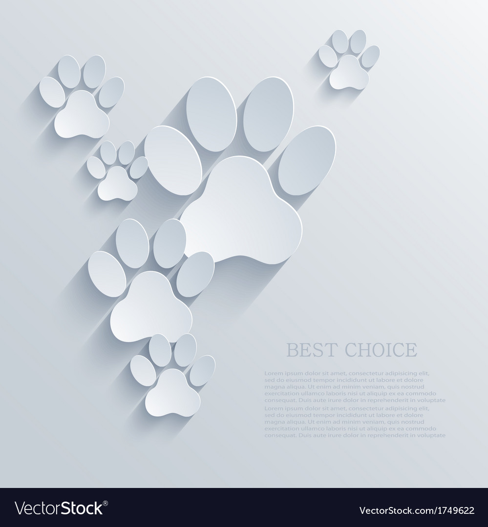 Paw background eps10 vector