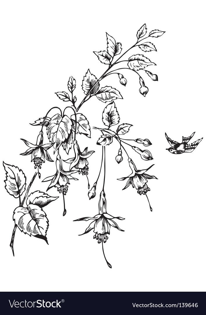 Retro flowers engraving vector