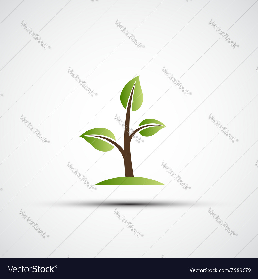 Green branches with leaves vector