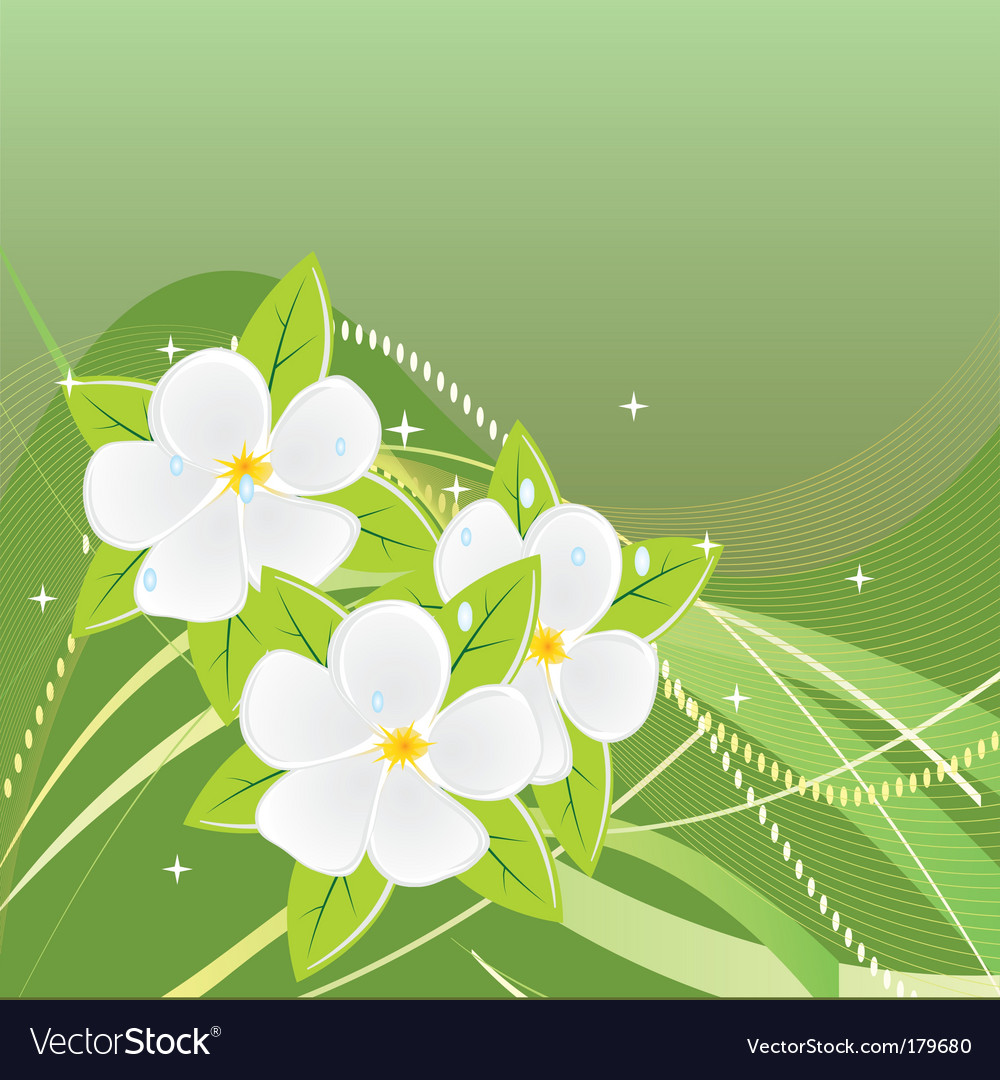 Abstract green background with magnolias vector
