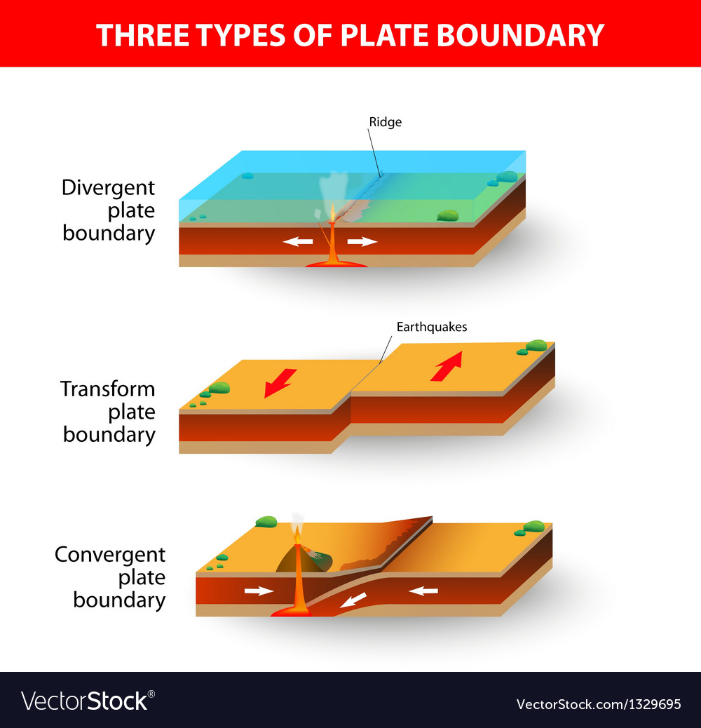 Tectonic plate vector