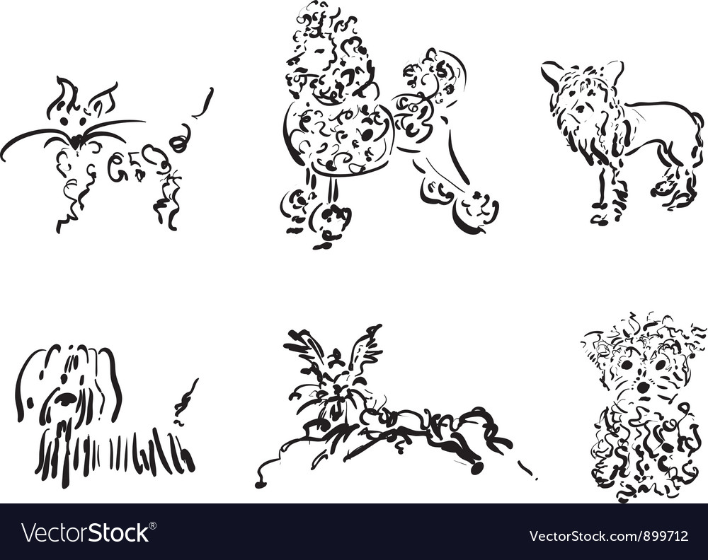 Dogs collection only contour vector