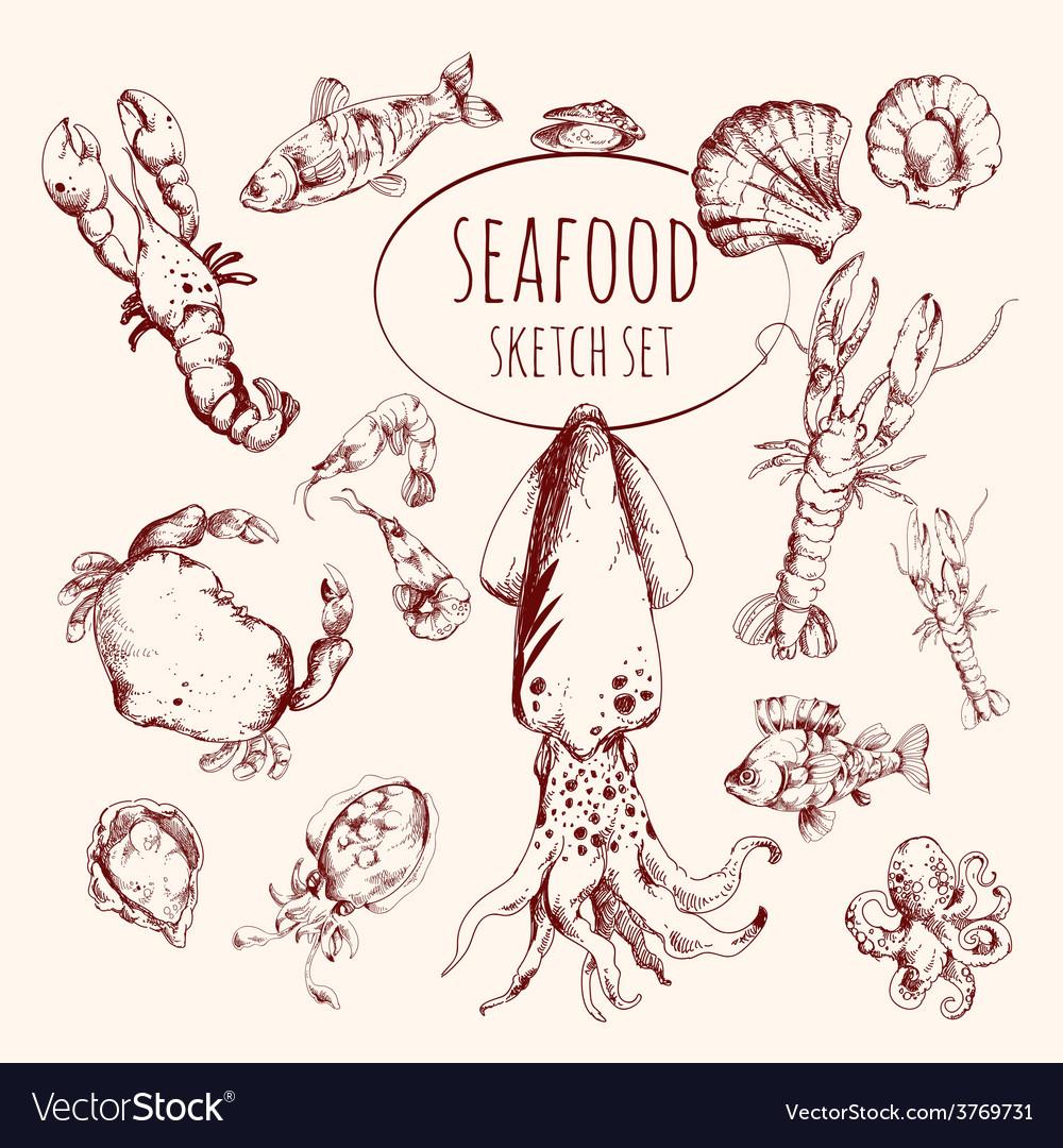 Seafood sketch set vector