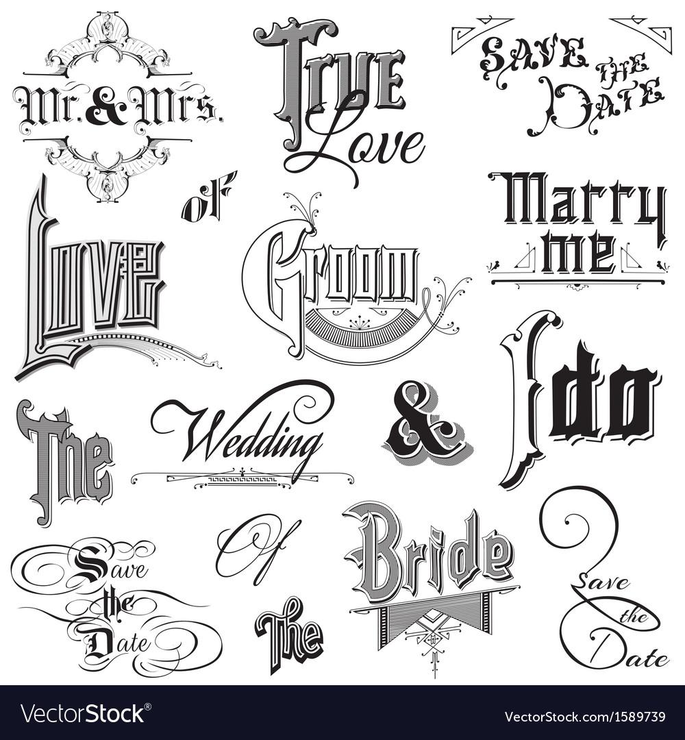 Calligraphic wedding elements vector