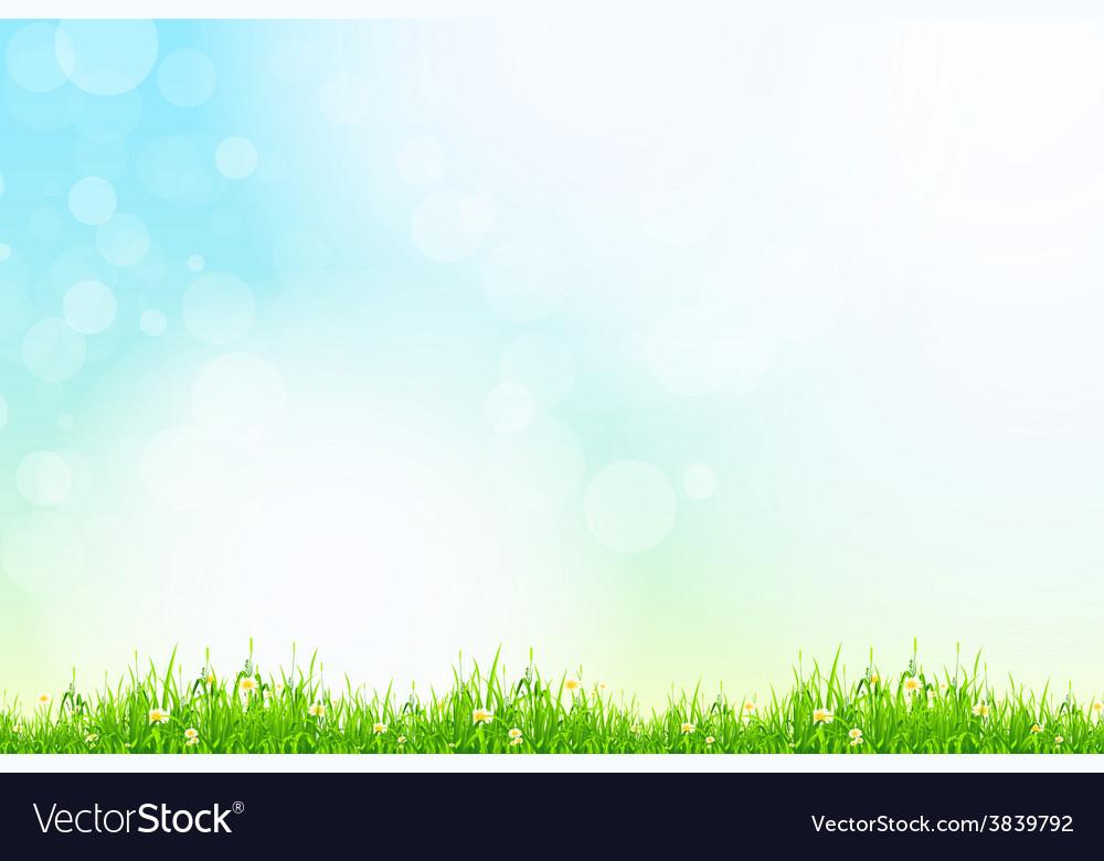 Fresh green grass with blue bokeh and sunlight vector