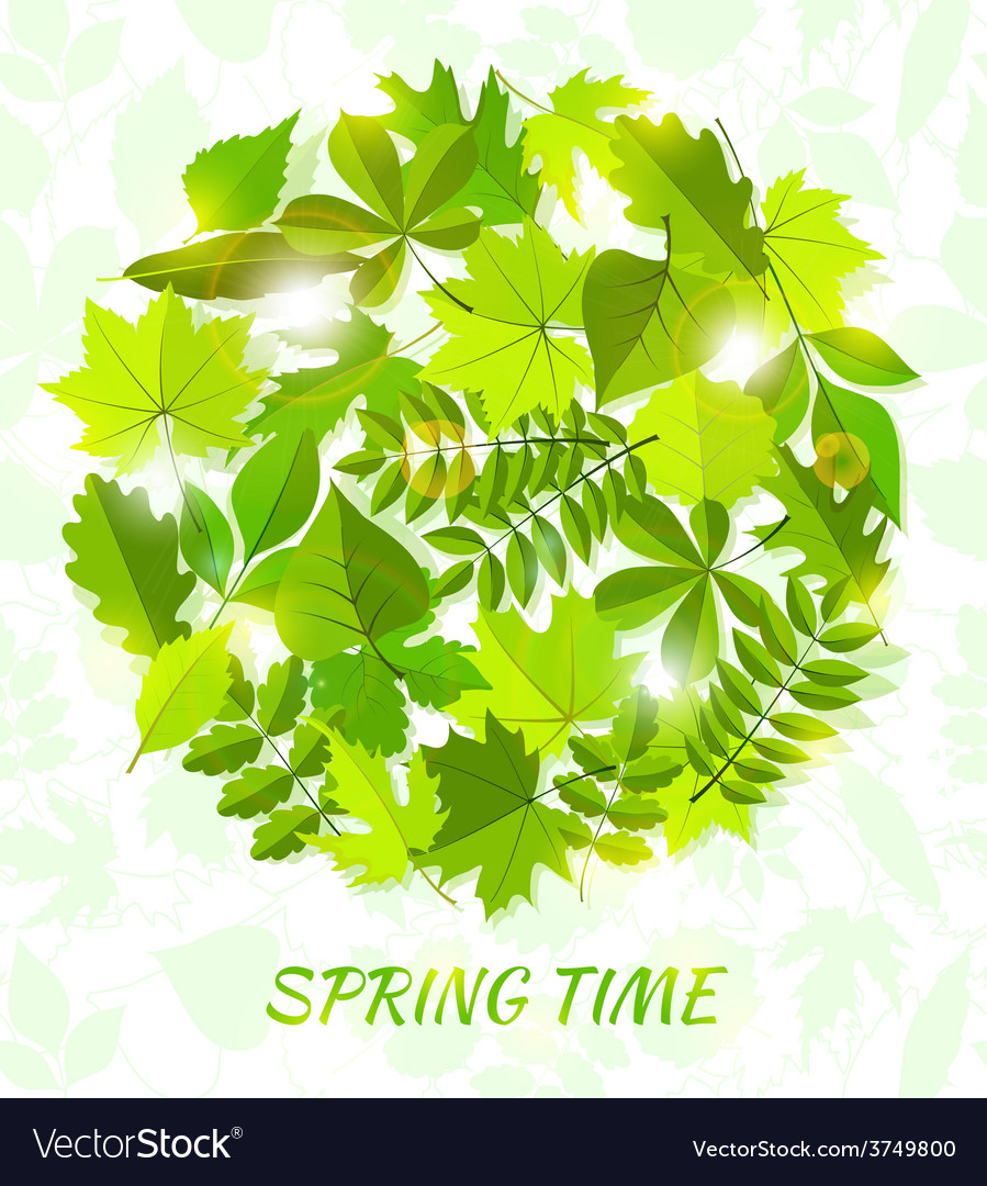 Round spring background from leaves vector