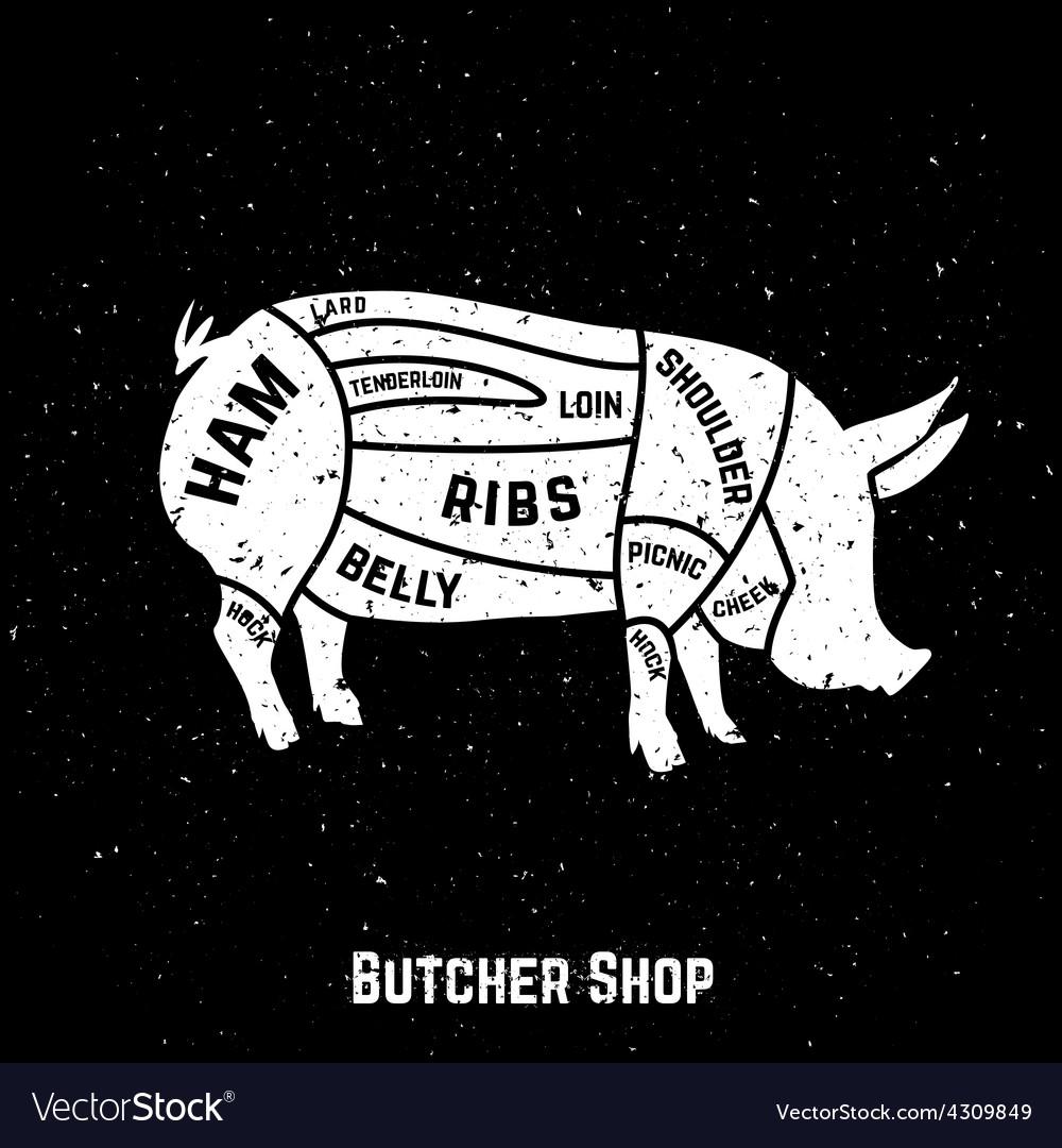 Cuts of pork vector