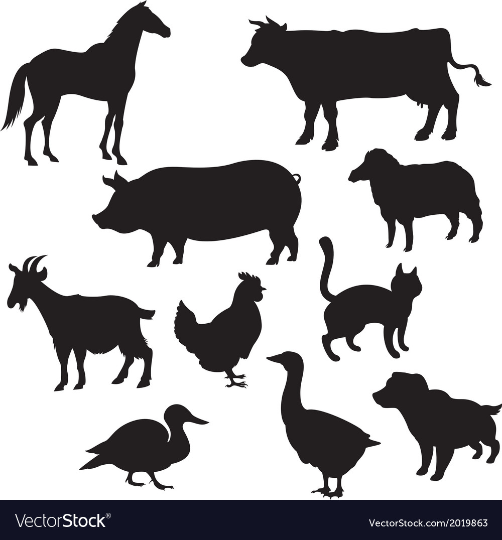 Silhouettes of domestic animals vector