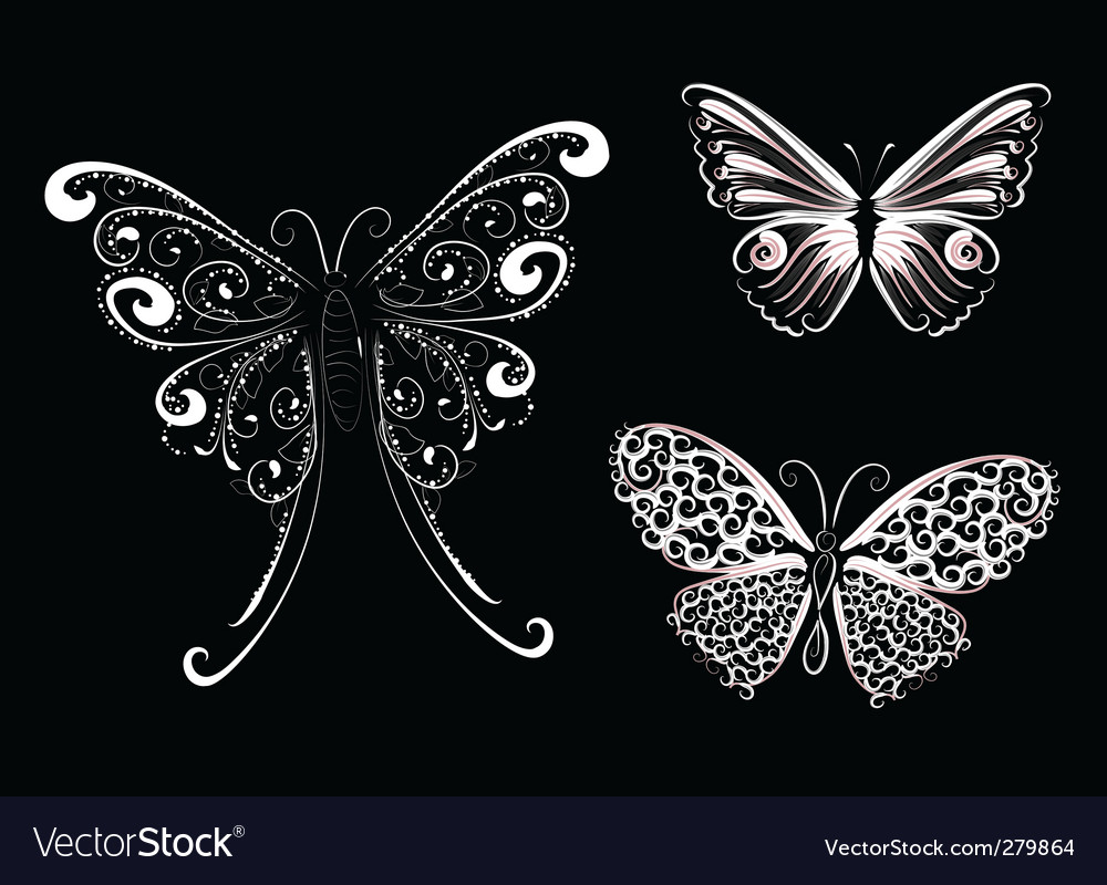 White lace butterfly vector