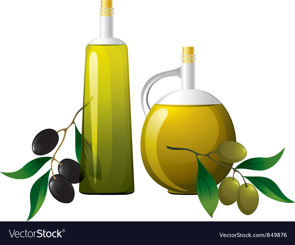 Bottle and olive branch vector