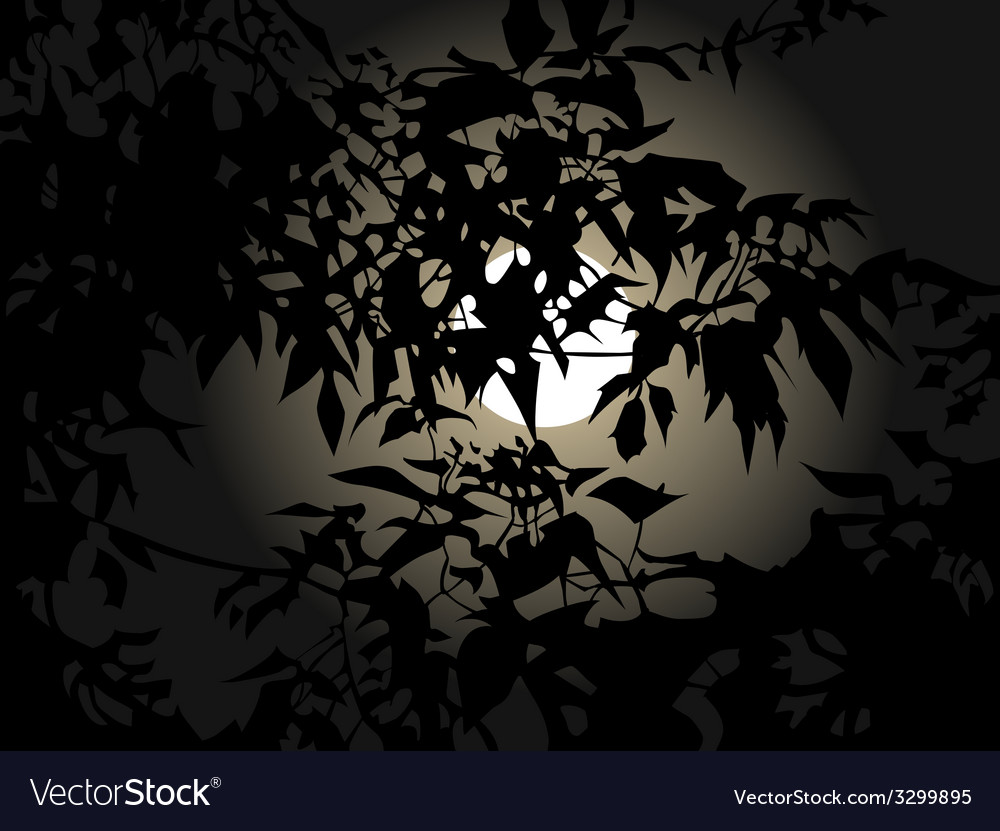 Full moon at night through the leaves vector