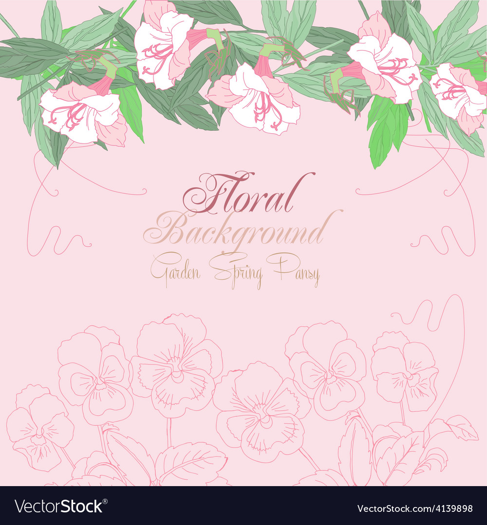 Floral background with pink pansies vector