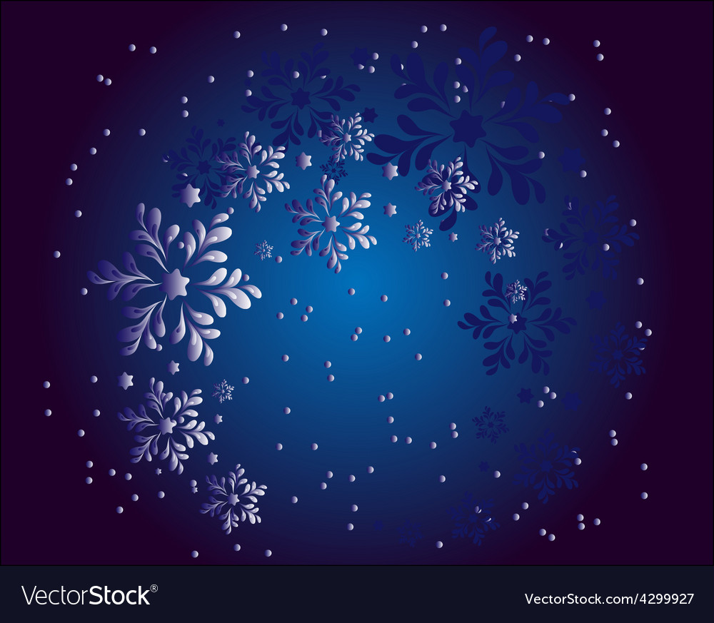 Christmas snowflakes in the night vector
