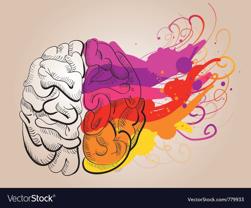 Creativity and brain vector