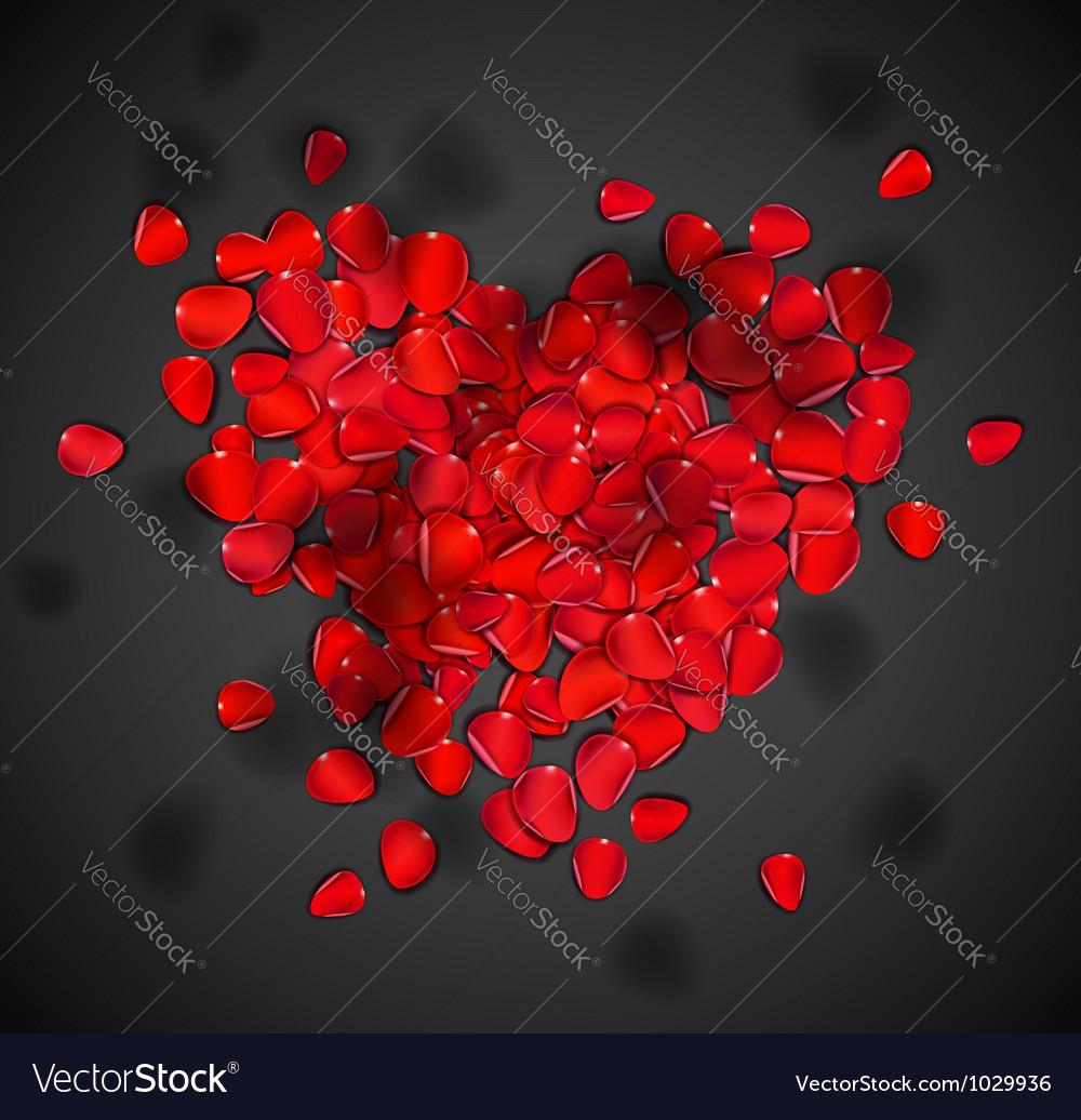 Heart of rose petals vector